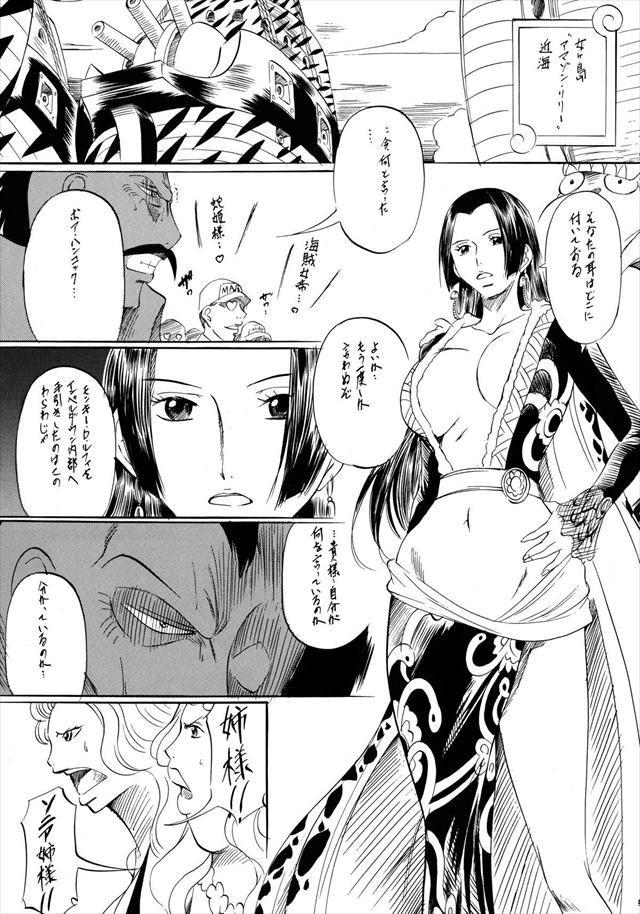 ワンピース エロマンガ・同人誌6003