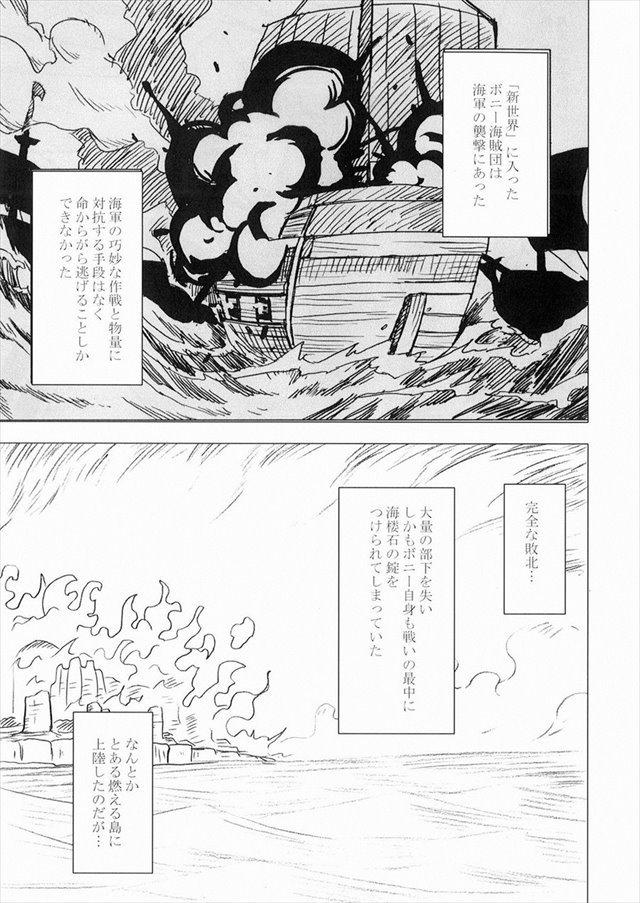 ワンピース エロマンガ・同人誌15002
