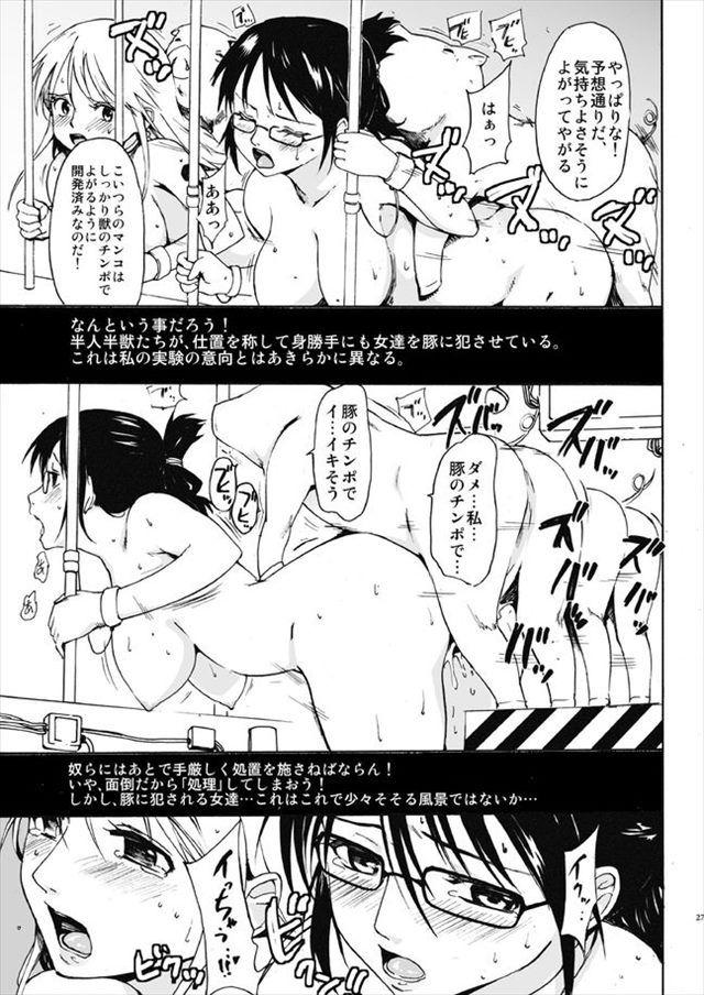 ワンピース エロマンガ・同人誌28026