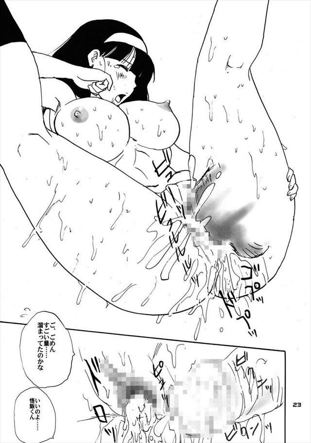 ドラゴンボール エロマンガ・同人誌12022